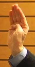 Brain hand model open