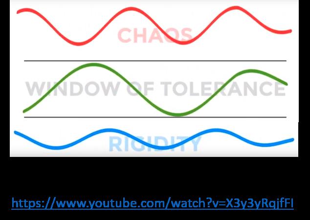 Window of tolerance1